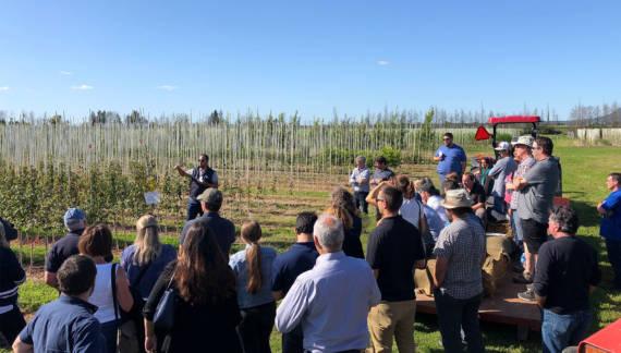 Visite de lassociation des producteurs en pepiniere